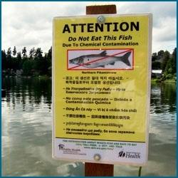 don't eat the fish sign