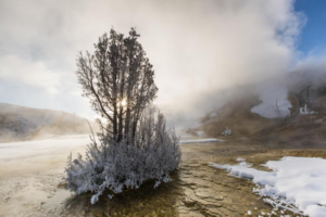Winter photo of Sunrise at Mammoth Hot Springs, Yellowstone National Park