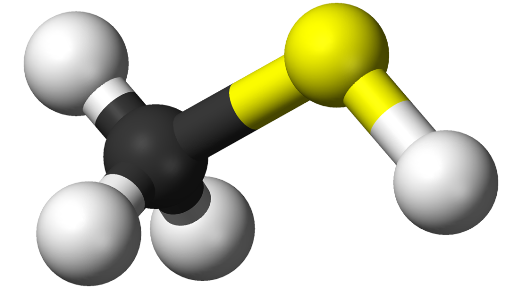 methanethiol molecule model